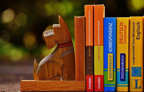 płatne-podręczniki-dla-lektorów-prywatnych